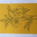 Ellen Williams Hellebore 3 Wychwood -8569d5e9