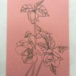 Ellen Williams Hellebore 4 Wychwood Art-267aa8ca