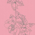 Ellen Williams Hellebore 4 Wychwood Art-da9c2056