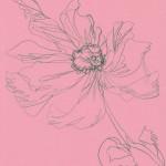 Ellen Williams Icelandic Poppy 1 Wychwood Art-738a385a