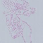 Ellen Williams Icelandic Poppy 2 Wychwood Art-cc908519