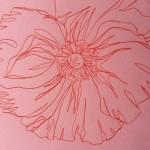 Ellen Williams Icelandic Poppy 3 Wychwood Art-3aaaa1b7