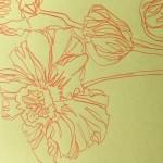 Ellen Williams Icelandic Poppy 5 Wychwood Art-5ad285f1