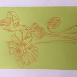 Ellen Williams Icelandic Poppy 5 Wychwood-cb73110e