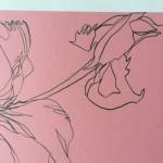 Ellen Williams Icelandic Poppy1 Wychwood Art-c4f57941