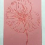Ellen Williams Icelandic Poppy3 Wychwood Art-2ffb54aa