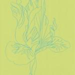 Ellen Williams Iris 2 Wychwood Art-d692207f