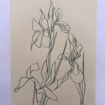 Ellen Williams Iris 3 Wychwood-02ccbdb3