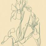 Ellen Williams Iris 3 Wychwood Art-c245e9c3