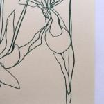 Ellen Williams Iris 3 Wychwood Art-c372b8da