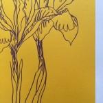 Ellen Williams Iris1 Wychwood Art-d318d1a3