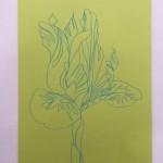 Ellen Williams Iris2 Wychwood Art-394b1634