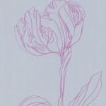 Ellen Williams Parrot Tulip 2 Wychwood Art-ec2ba345