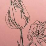 Ellen Williams Tulip 2 Wychwood Art-25fd658b