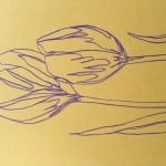 Ellen Williams Tulip 3 Wychwood Art-686a5185