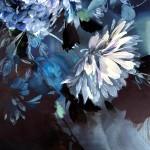 Jo Haran Navy Blue Dream  Wychwood Art 10-5999e14a