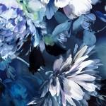 Jo Haran Navy Blue Dream  Wychwood Art 9-a9382502