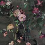 Jo Haran Woodland Stems on Dark Wychwood Art8-e5c8f064