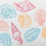 Joanna Padfield Seashells Wychwood Art 1-b873f287