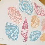 Joanna Padfield Seashells Wychwood Art-25ae0b95