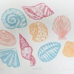 Joanna Padfield Seashells Wychwood Art 4-59e8b313