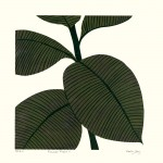 Kerry Day Rubbber Plant II Wychwood Arts-8405e046