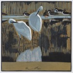 Little+Egrets-42a00d4e
