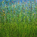 Midnight_Meadow_Whispers (4)-85e8c044