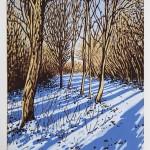 Snow Shadows FF 2mb-bcd22913