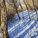 Snow Shadows close-54f740c8