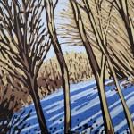 Snow Shadows close up-4fb7a2f6