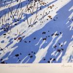 Snow Shadows signature-986607b2