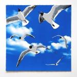 colony of bh gulls web-035bbc3c