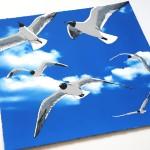 colony of bh gulls3 web-24a19a85
