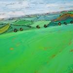 cotswold field pattern georgie dowling wychwood art 02-6956c295