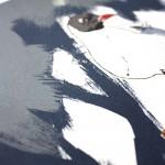 fiona hamilton black headed gull crop2-6b13aa2a