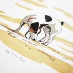 fiona hamilton dog on the beach crop 1 full-960474bc