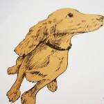 fiona hamilton puppy detail1-b9451cba