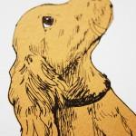 fiona hamilton puppy detail2-28c6e9e9