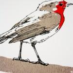 fiona hamilton robin small detail-42361649
