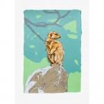 meerkat-artwork-web-dff750d3