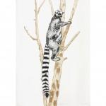 ring tailed lemur print artwork-cd6499ec