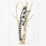 ring tailed lemur print-dca88db4