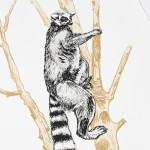 ring tailed lemur print detail 2-c85f21d0