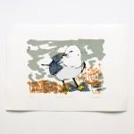 seagull in clover full square smaller-3509e7d0