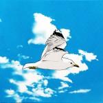 seagull-in-flight-artwork-15774dfa