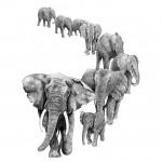 Jane Peart – African Trail Wychwood Art-544bdb0c
