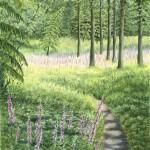 Jane Peart Foxglove Path Wychwood Art-222e4111
