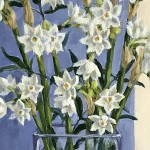 Marie Robinson Paperwhites Wychwood Art detail 1-6c48ac87