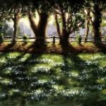 Marie Robinson Sunlit Snowdrops, Swyncombe Wychwood Art-75ae0864